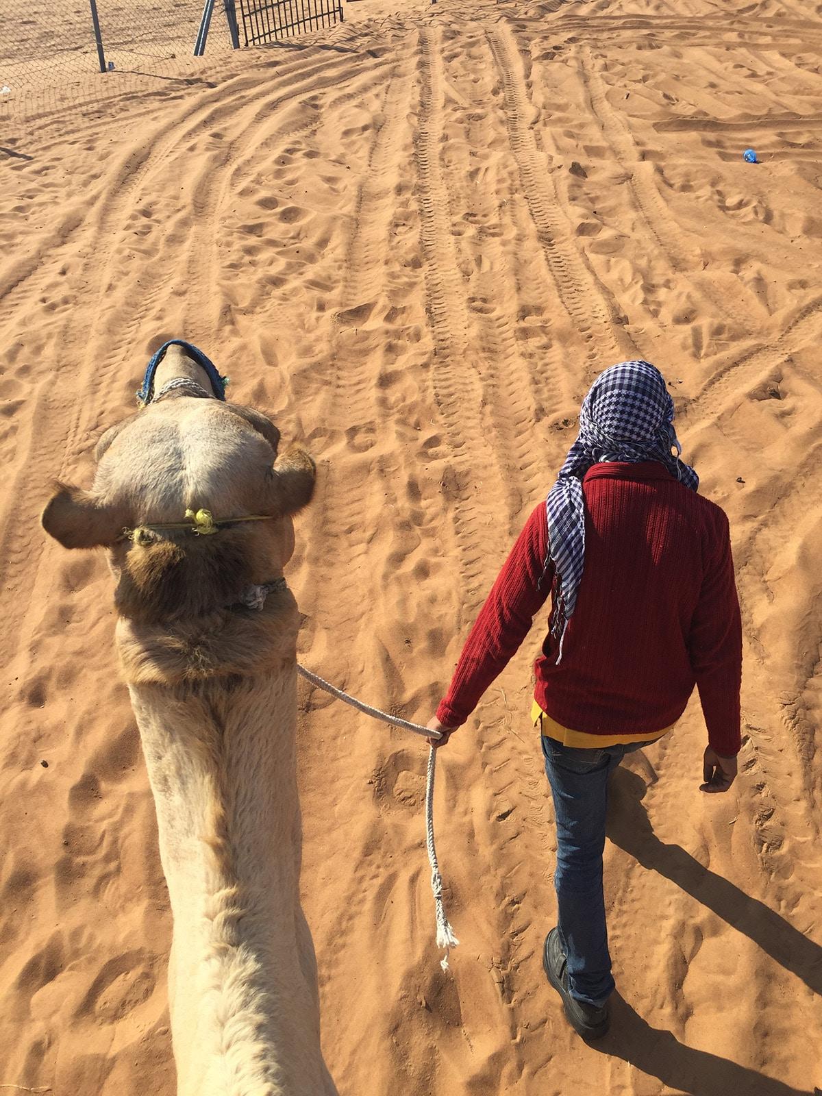 Kameel rijden in de woestijn van Dubai