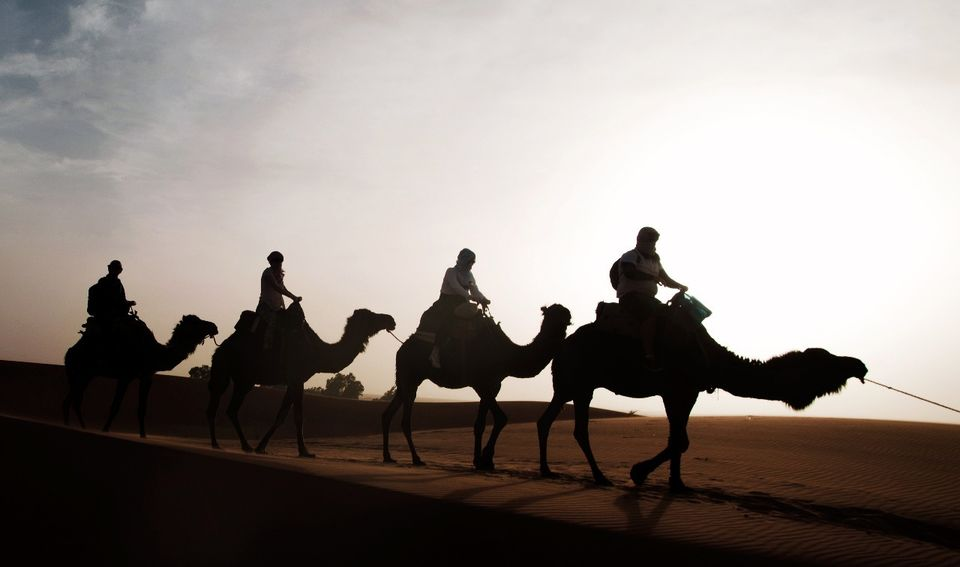 Camel trip in the Dubai desert