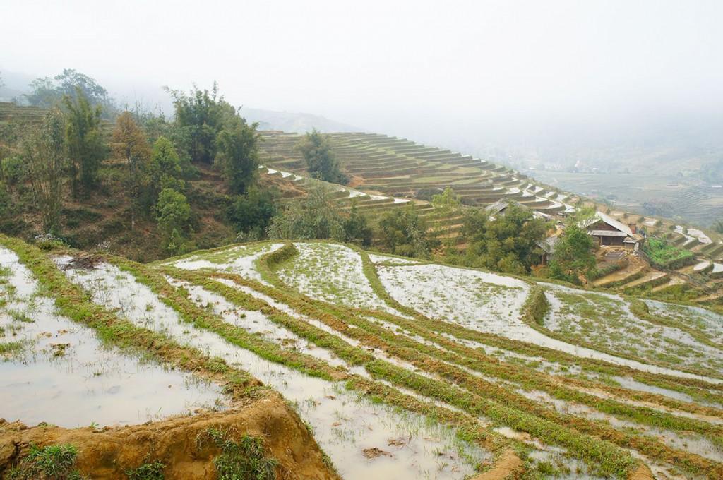 Op vakantie naar Vietnam? Vraag een visum Vietnam aan