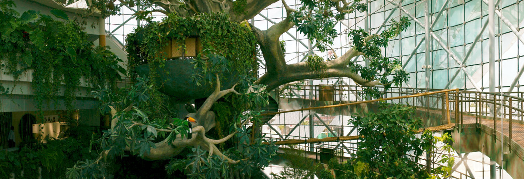 The Green Planet – een indoor tropisch regenwoud in de woestijn